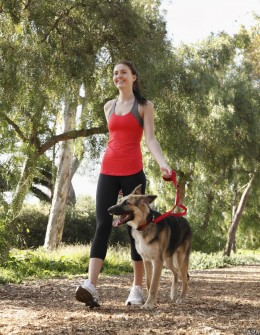 Enjoy The Warm Weather With Outdoor Activities That Come Naturally To Your Pet